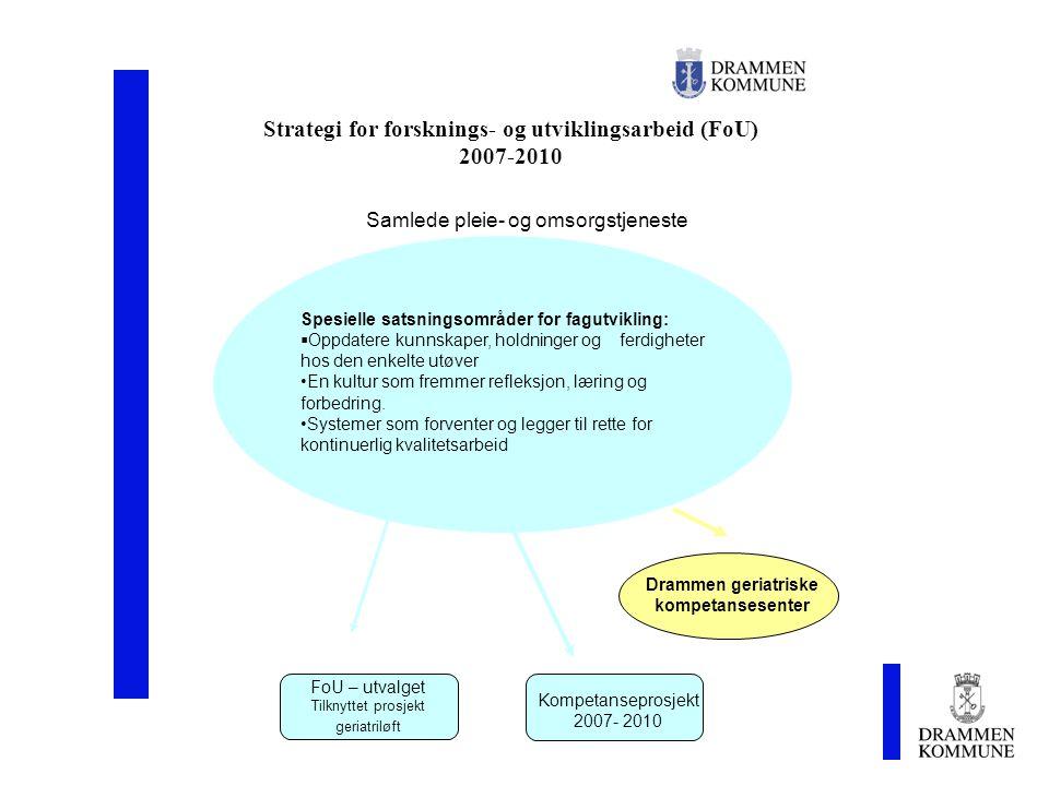 Strategi for forsknings- og utviklingsarbeid (FoU) 2007-2010 Spesielle satsningsområder for fagutvikling:  Oppdatere kunnskaper, holdninger og ferdig