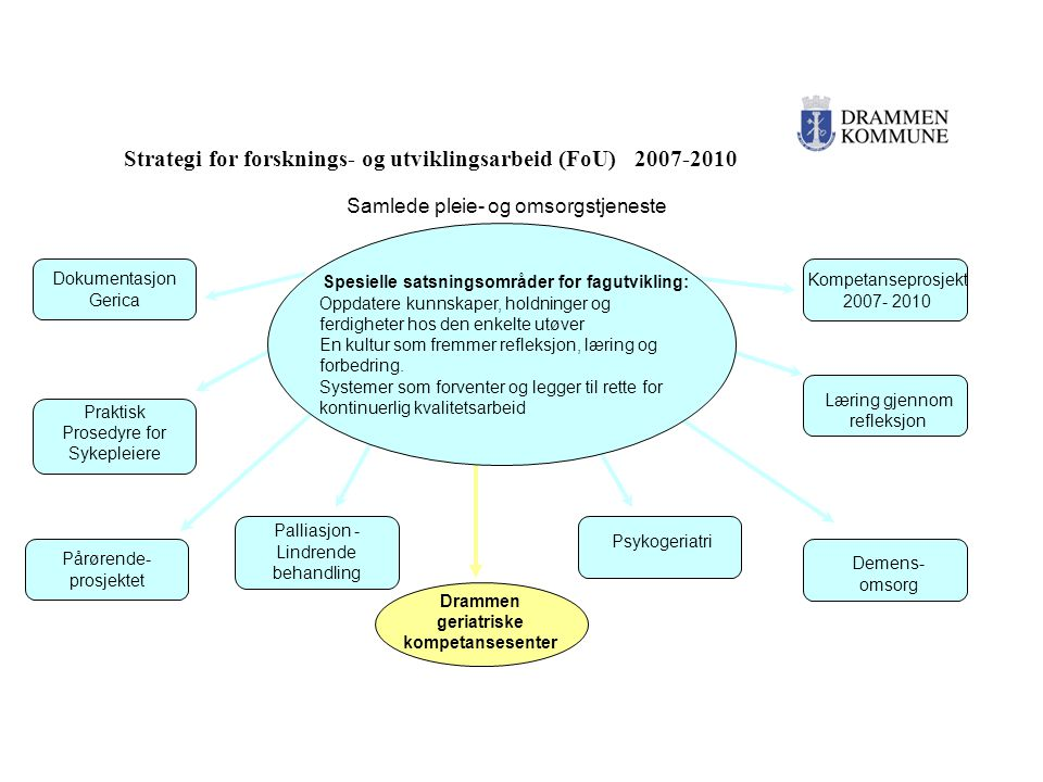 Strategi for forsknings- og utviklingsarbeid (FoU) 2007-2010 Samlede pleie- og omsorgstjeneste Dokumentasjon Gerica Kompetanseprosjekt 2007- 2010 Dram