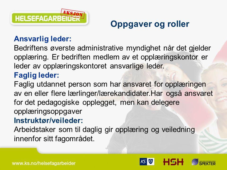 Ansvarlig leder: Bedriftens øverste administrative myndighet når det gjelder opplæring.