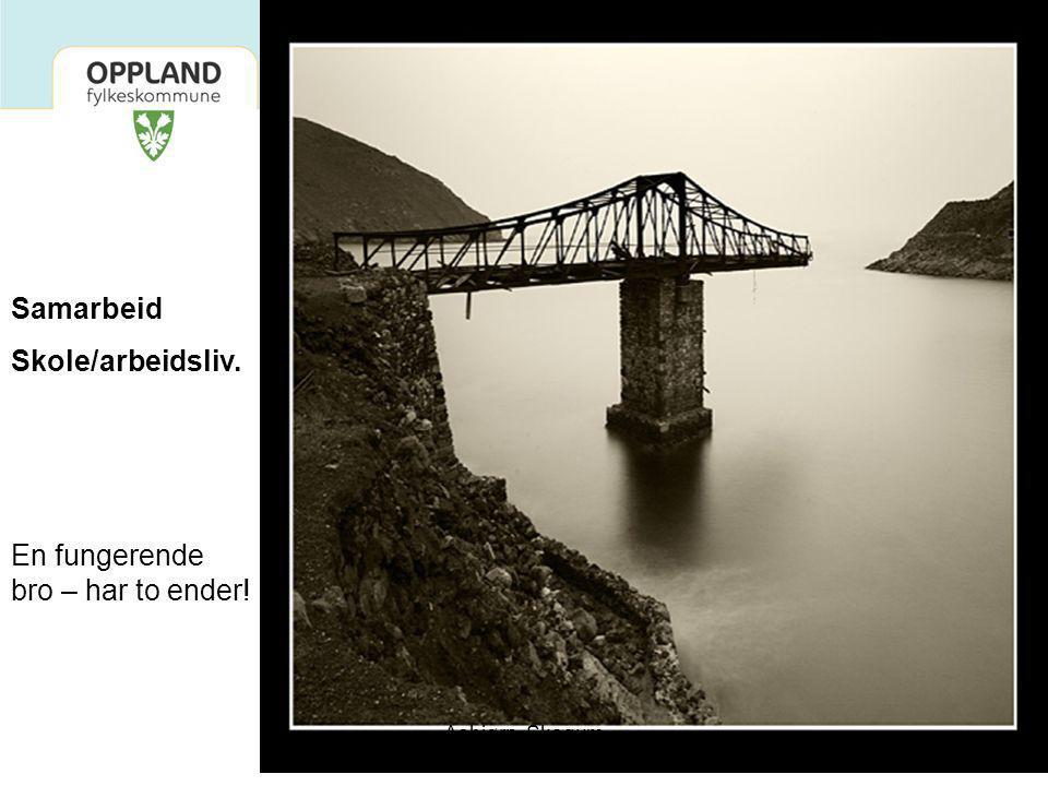 12 Samarbeid Skole/arbeidsliv. En fungerende bro – har to ender! Asbjørn Skogum