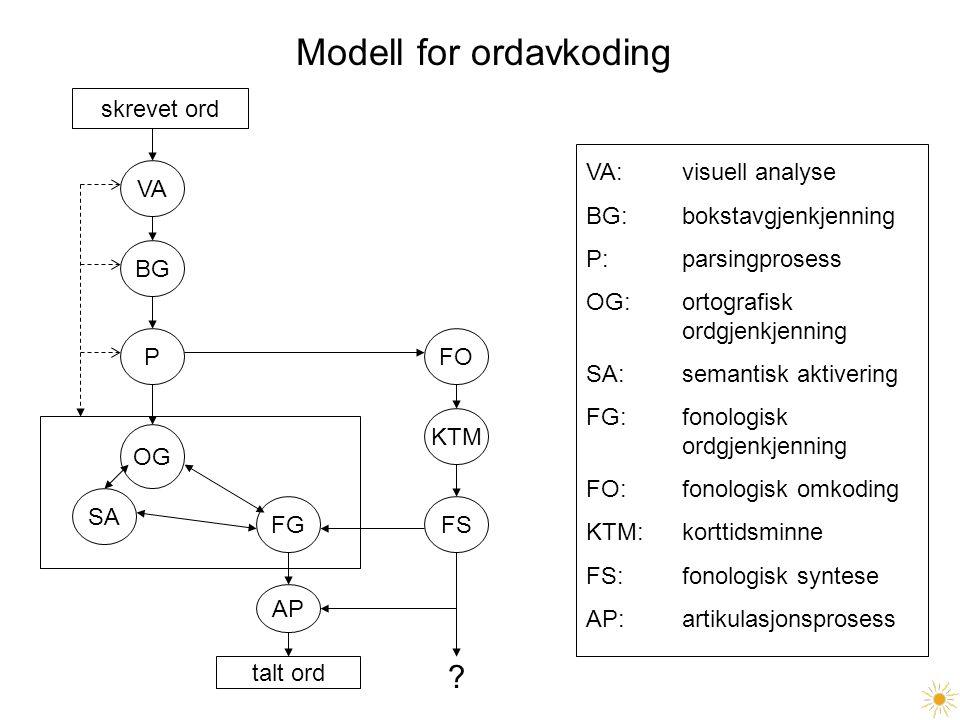 Modell for ordavkoding skrevet ord VA BG P SA OG FG AP talt ord FO KTM FS ? VA: visuell analyse BG: bokstavgjenkjenning P: parsingprosess OG: ortograf