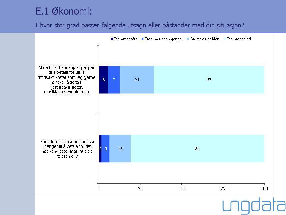 E.1 Økonomi: I hvor stor grad passer følgende utsagn eller påstander med din situasjon?