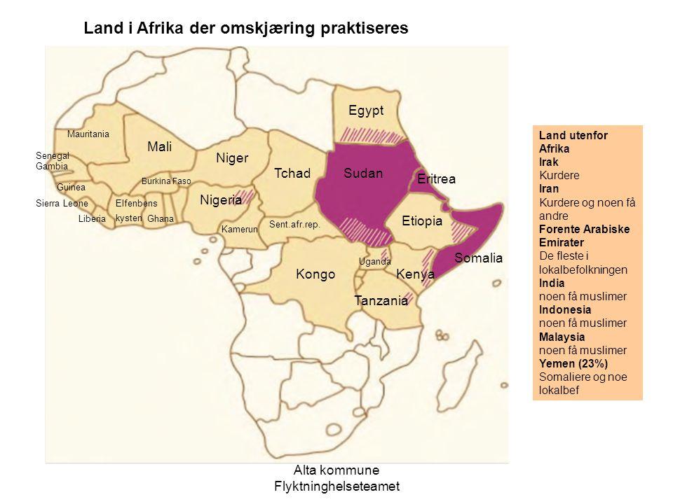 Alta kommune Flyktninghelseteamet Land utenfor Afrika Irak Kurdere Iran Kurdere og noen få andre Forente Arabiske Emirater De fleste i lokalbefolkning