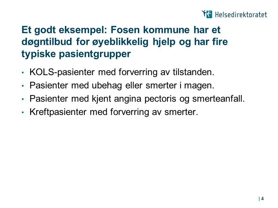 | 4 Et godt eksempel: Fosen kommune har et døgntilbud for øyeblikkelig hjelp og har fire typiske pasientgrupper KOLS-pasienter med forverring av tilstanden.