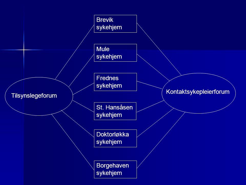 Brevik sykehjem Mule sykehjem Frednes sykehjem St. Hansåsen sykehjem Doktorløkka sykehjem Borgehaven sykehjem Tilsynslegeforum Kontaktsykepleierforum