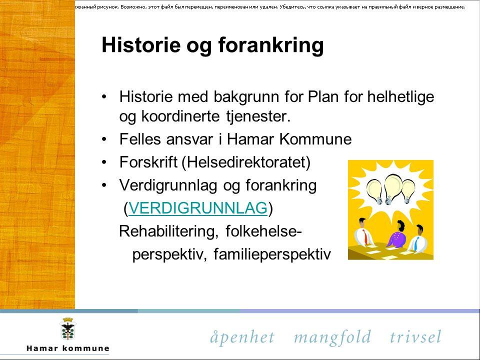 Historie og forankring Historie med bakgrunn for Plan for helhetlige og koordinerte tjenester. Felles ansvar i Hamar Kommune Forskrift (Helsedirektora