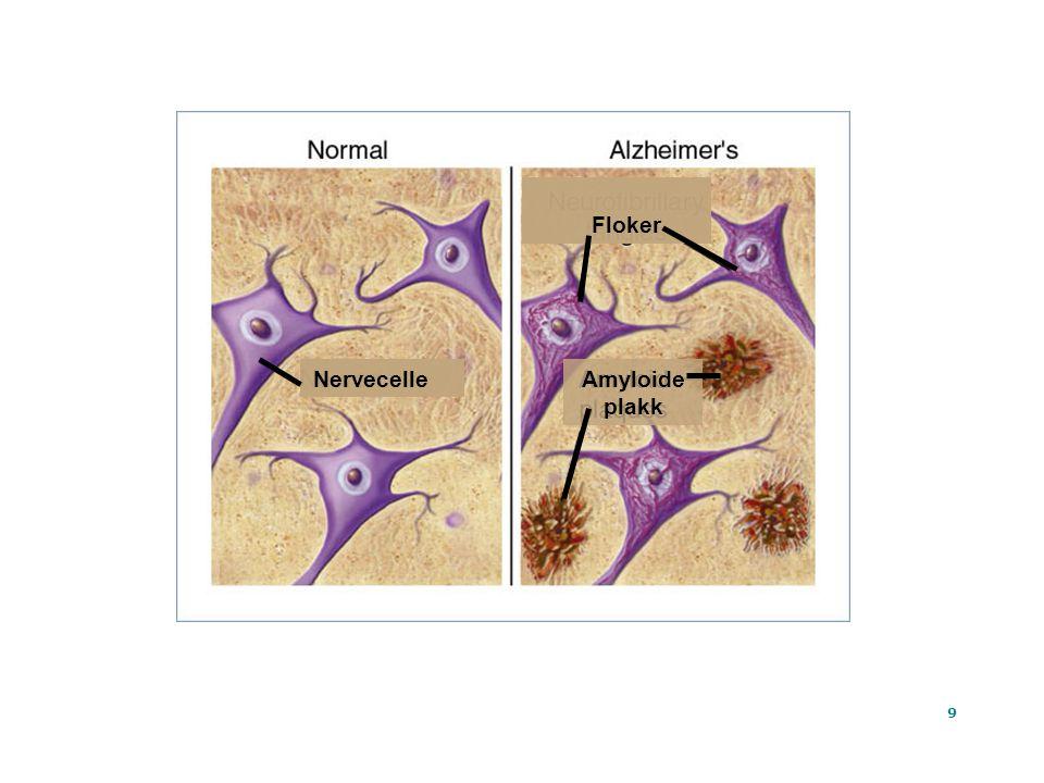 10 Dagens medisiner blokker reseptorene og hemmer nedbryting av acetylkolin Ta Tat At x Signalstoff acetylkolin