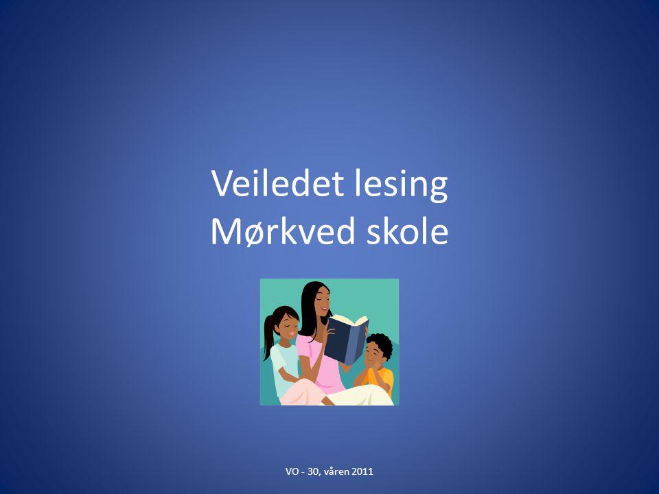 Veiledet lesing Mørkved skole VO - 30, våren 2011