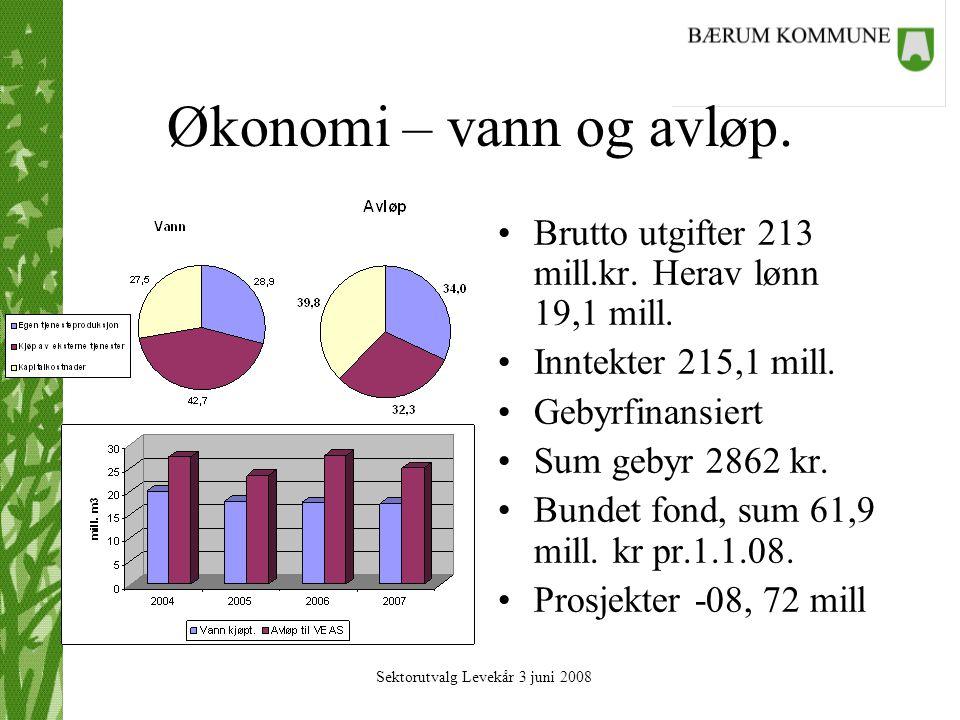 Økonomi – vann og avløp. Brutto utgifter 213 mill.kr.