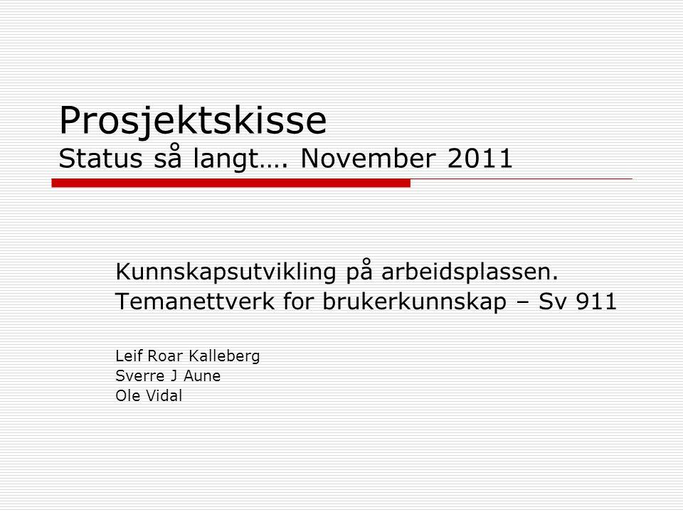 Prosjektskisse Status så langt….November 2011 Kunnskapsutvikling på arbeidsplassen.