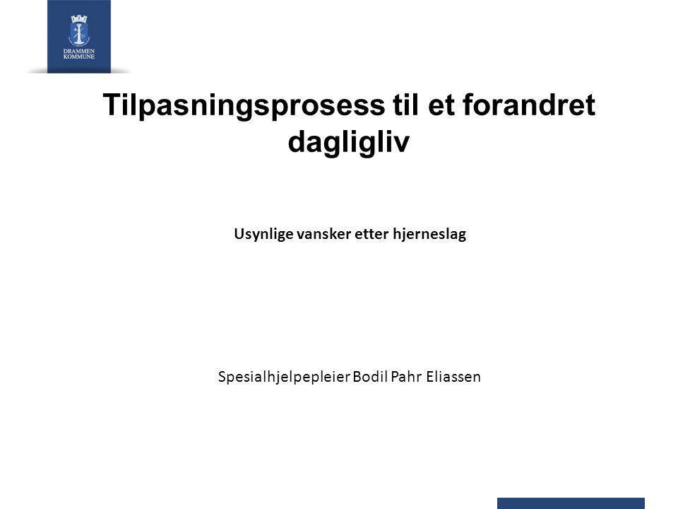 Tilpasningsprosess til et forandret dagligliv Usynlige vansker etter hjerneslag Spesialhjelpepleier Bodil Pahr Eliassen