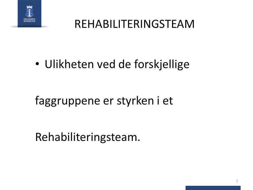 REHABILITERINGSTEAM Ulikheten ved de forskjellige faggruppene er styrken i et Rehabiliteringsteam. 7