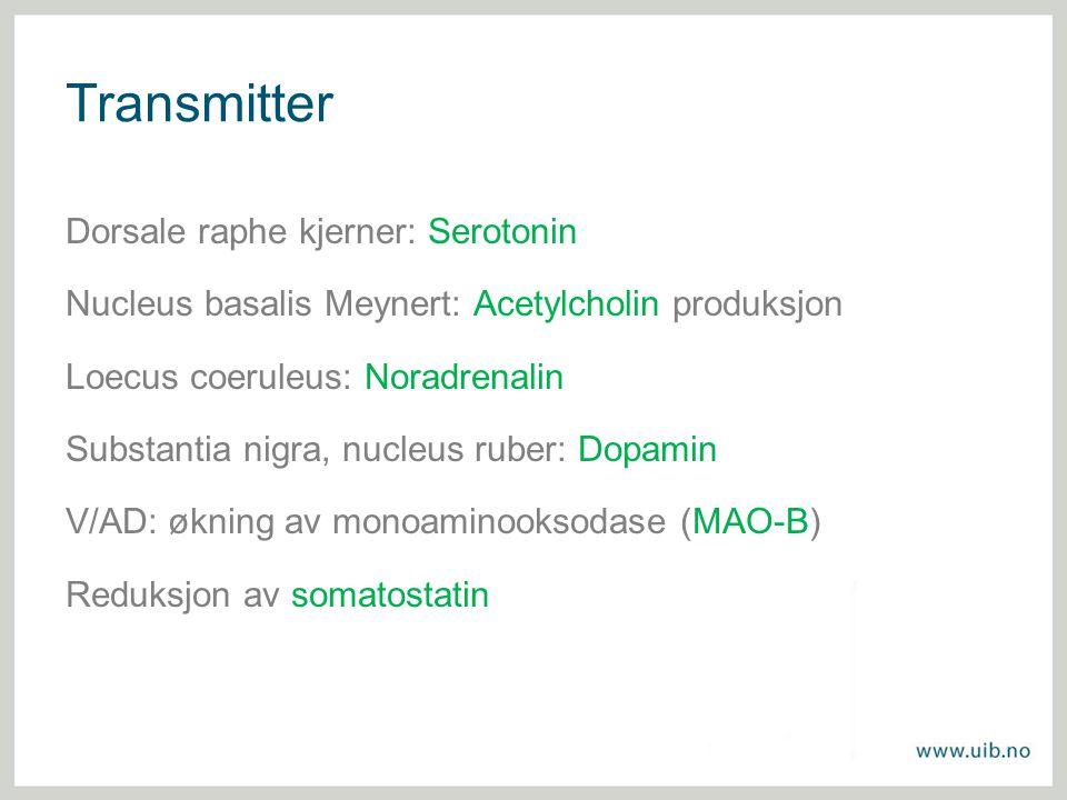 Transmitter Dorsale raphe kjerner: Serotonin Nucleus basalis Meynert: Acetylcholin produksjon Loecus coeruleus: Noradrenalin Substantia nigra, nucleus