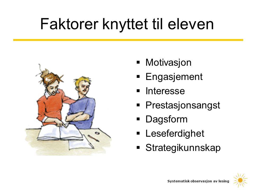  Motivasjon  Engasjement  Interesse  Prestasjonsangst  Dagsform  Leseferdighet  Strategikunnskap Systematisk observasjon av lesing Faktorer kny