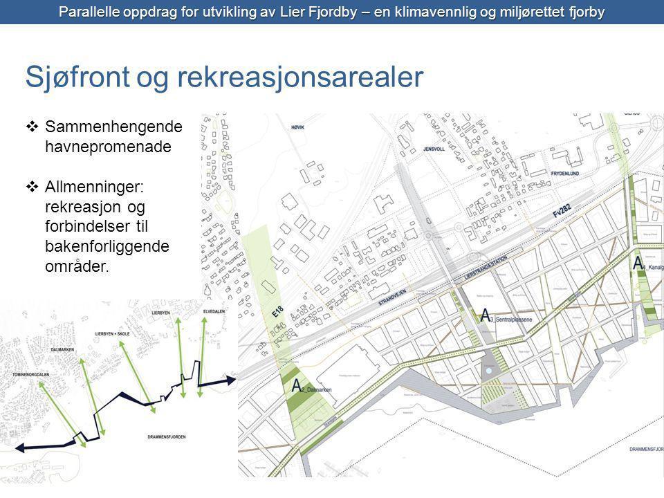 Parallelle oppdrag for utvikling av Lier Fjordby – en klimavennlig og miljørettet fjorby  Sammenhengende havnepromenade  Allmenninger: rekreasjon og forbindelser til bakenforliggende områder.