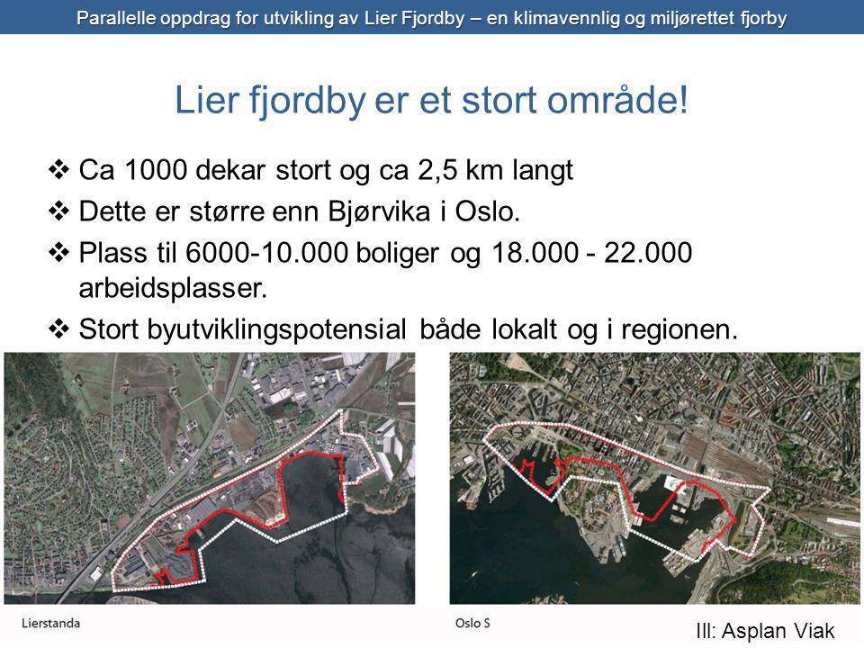 Lier fjordby er et stort område.