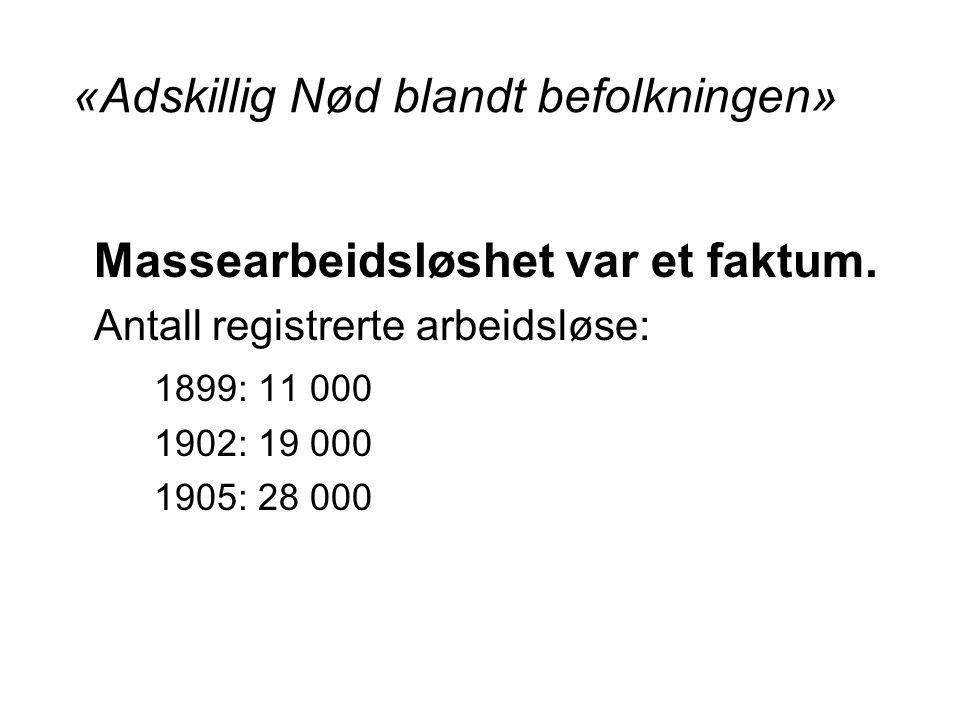«Adskillig Nød blandt befolkningen» Massearbeidsløshet var et faktum.