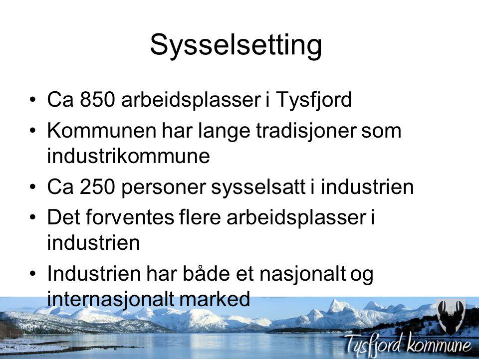 Sysselsetting Ca 850 arbeidsplasser i Tysfjord Kommunen har lange tradisjoner som industrikommune Ca 250 personer sysselsatt i industrien Det forventes flere arbeidsplasser i industrien Industrien har både et nasjonalt og internasjonalt marked