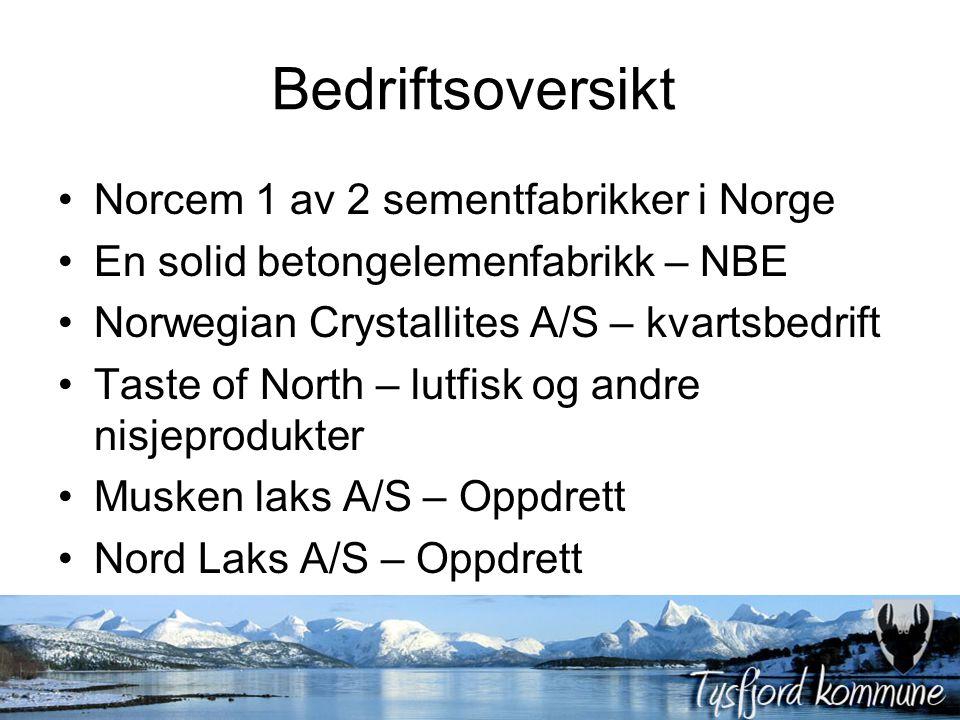 Bedriftsoversikt Norcem 1 av 2 sementfabrikker i Norge En solid betongelemenfabrikk – NBE Norwegian Crystallites A/S – kvartsbedrift Taste of North –