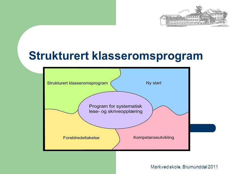 Mørkved skole, Brumunddal 2011 Strukturert klasseromsprogram