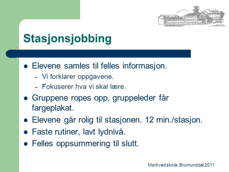 Mørkved skole, Brumunddal 2011 Stasjonsjobbing Elevene samles til felles informasjon. – Vi forklarer oppgavene. – Fokuserer hva vi skal lære. Gruppene