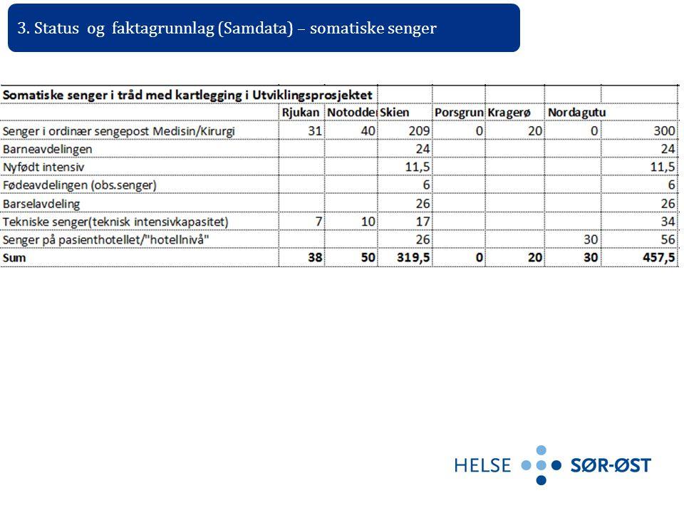 3. Status og faktagrunnlag (Samdata) – somatiske senger