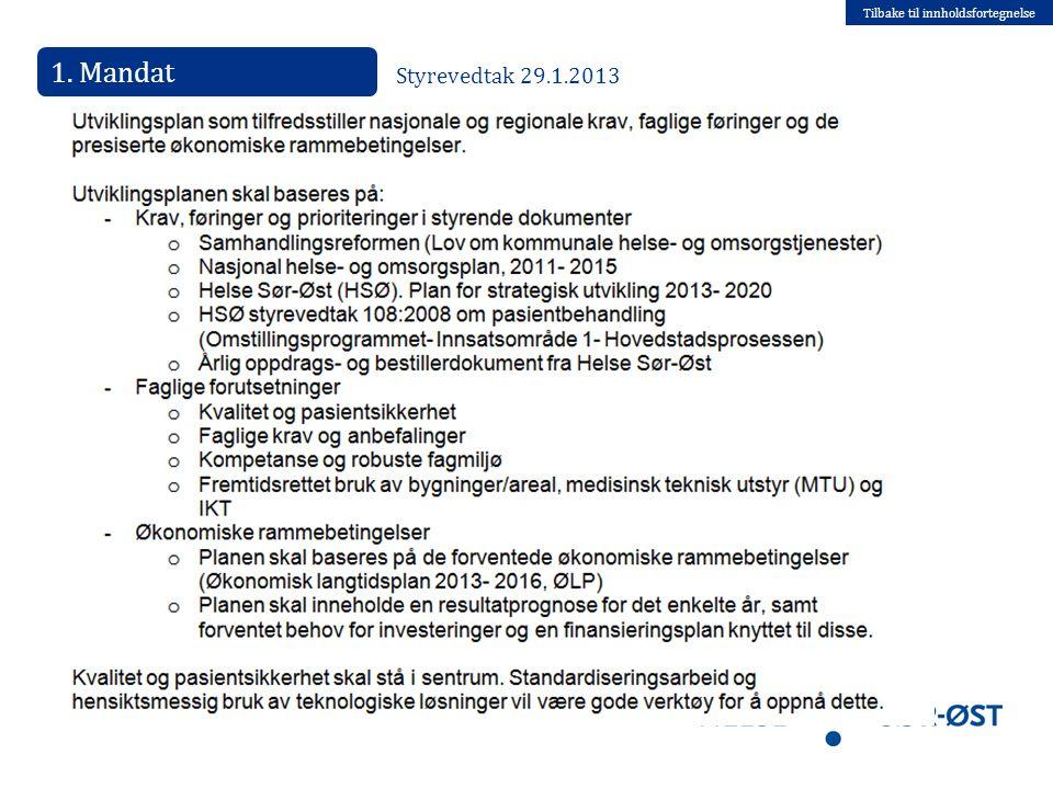 Tilbake til innholdsfortegnelse 1. Mandat Styrevedtak 29.1.2013