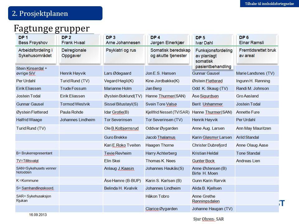 Tilbake til innholdsfortegnelse 2. Prosjektplanen 08.07.2014 Fagtunge grupper