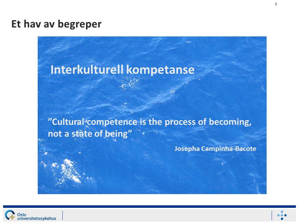 6 Kultur og kommunikasjon (Kultur = colere = dyrke) + (Kommunikasjon = communis = felles) = å dyrke noe sammen – et felles gode.