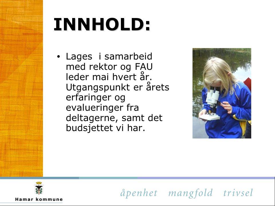 INNHOLD: Lages i samarbeid med rektor og FAU leder mai hvert år. Utgangspunkt er årets erfaringer og evalueringer fra deltagerne, samt det budsjettet