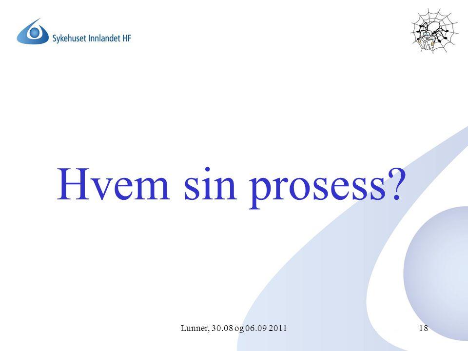 Lunner, 30.08 og 06.09 201118 Hvem sin prosess?
