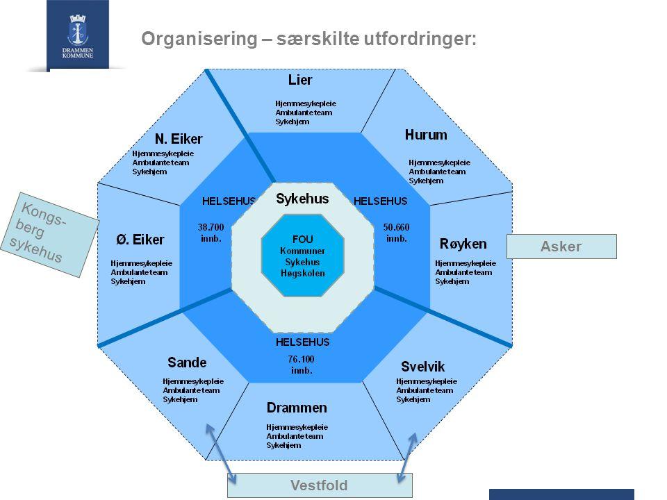 Organisering – særskilte utfordringer: Asker Kongs- berg sykehus Vestfold