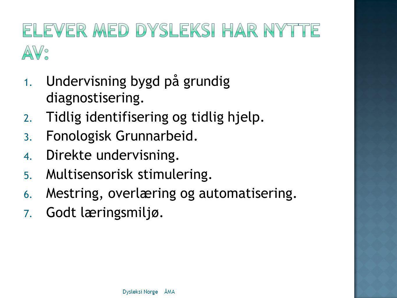 1.Undervisning bygd på grundig diagnostisering. 2.