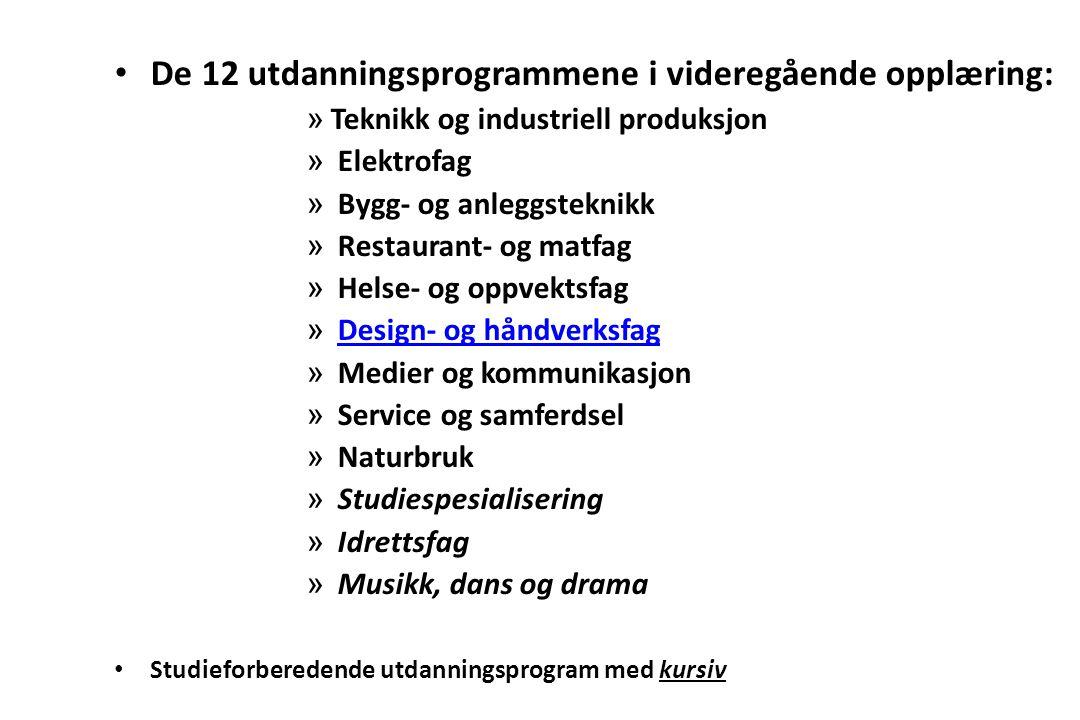 De 12 utdanningsprogrammene i videregående opplæring: » Teknikk og industriell produksjon » Elektrofag » Bygg- og anleggsteknikk » Restaurant- og matf