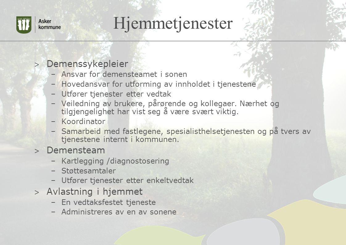 Hjemmetjenester > Demenssykepleier –Ansvar for demensteamet i sonen –Hovedansvar for utforming av innholdet i tjenestene –Utfører tjenester etter vedtak –Veiledning av brukere, pårørende og kollegaer.