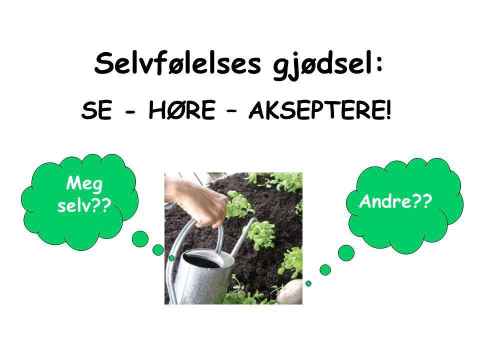 Selvfølelse Å være.. Selvtillit Å gjøre/ha.. SELVBILDET …å kunne skille sak fra person… Margrethe Munthe