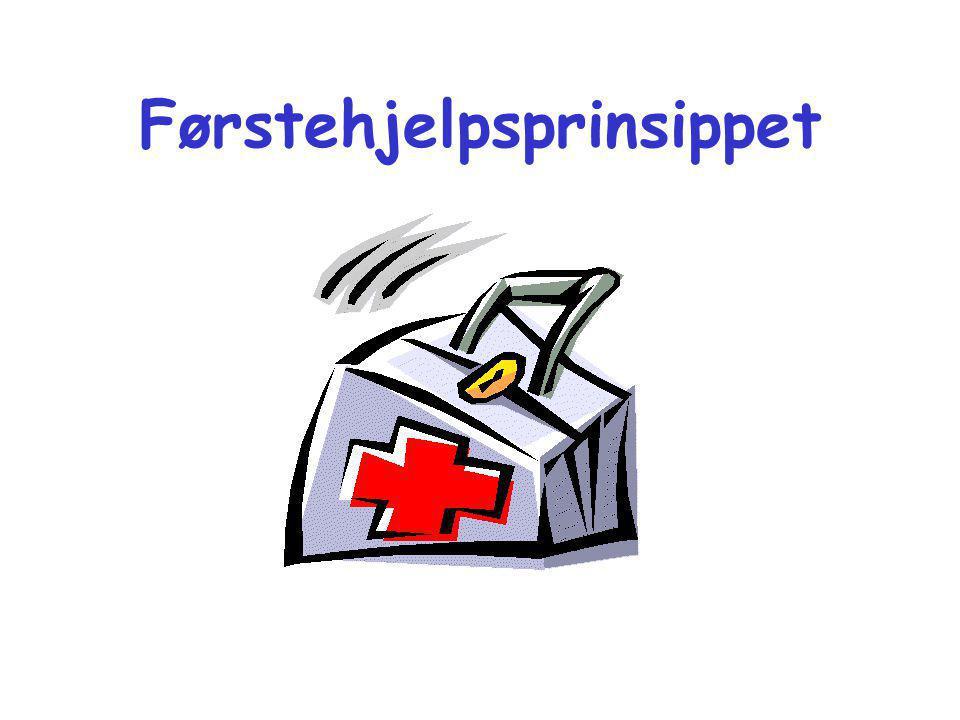 """Tilpasningsprinsippet Hjelperen må tilpasse seg pasienten og ikke omvendt! """"Driter`n!"""""""