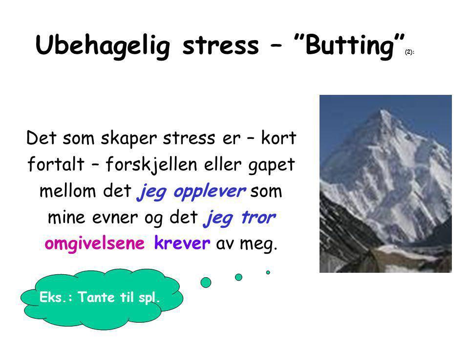 Ubehagelig stress – Butting (2): Det som skaper stress er – kort fortalt – forskjellen eller gapet mellom det jeg opplever som mine evner og det jeg tror omgivelsene krever av meg.