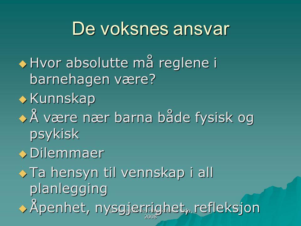 © Anne Greve, Høgskolen i Oslo, 2008 De voksnes ansvar  Hvor absolutte må reglene i barnehagen være?  Kunnskap  Å være nær barna både fysisk og psy