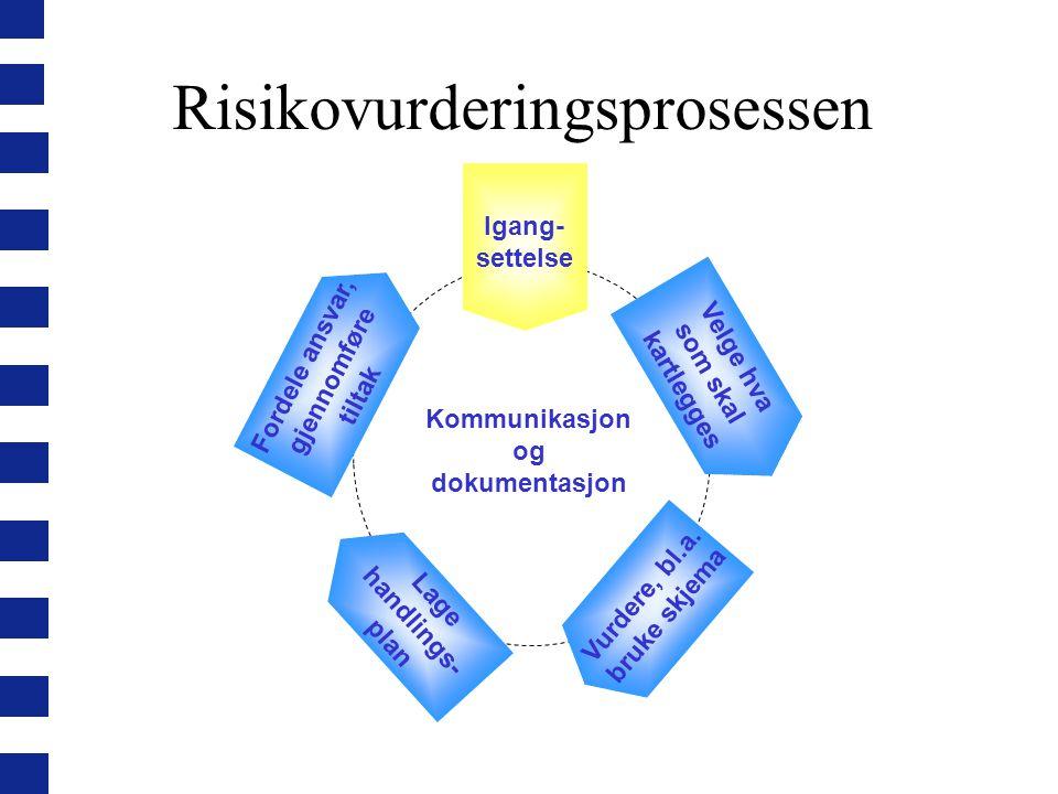 Risikovurderingsprosessen Velge hva som skal kartlegges Fordele ansvar, gjennomføre tiltak Vurdere, bl.a.