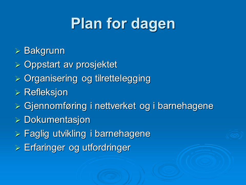 Plan for dagen  Bakgrunn  Oppstart av prosjektet  Organisering og tilrettelegging  Refleksjon  Gjennomføring i nettverket og i barnehagene  Doku