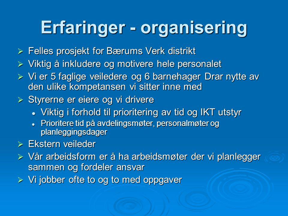 Erfaringer - organisering  Felles prosjekt for Bærums Verk distrikt  Viktig å inkludere og motivere hele personalet  Vi er 5 faglige veiledere og 6