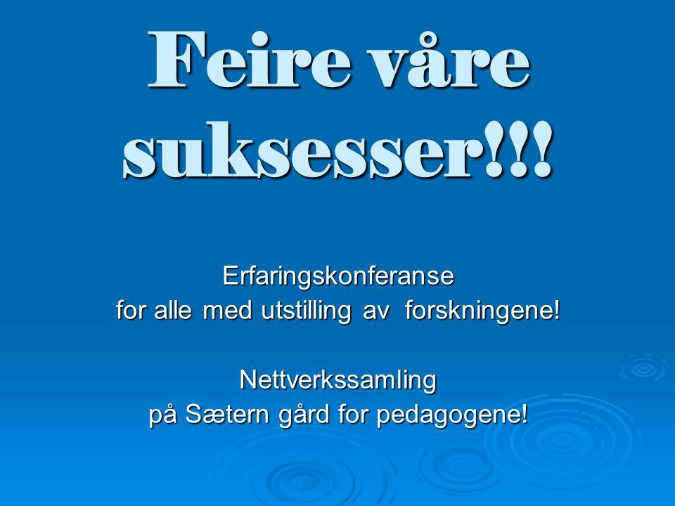 Feire våre suksesser!!! Erfaringskonferanse for alle med utstilling av forskningene! Nettverkssamling på Sætern gård for pedagogene!