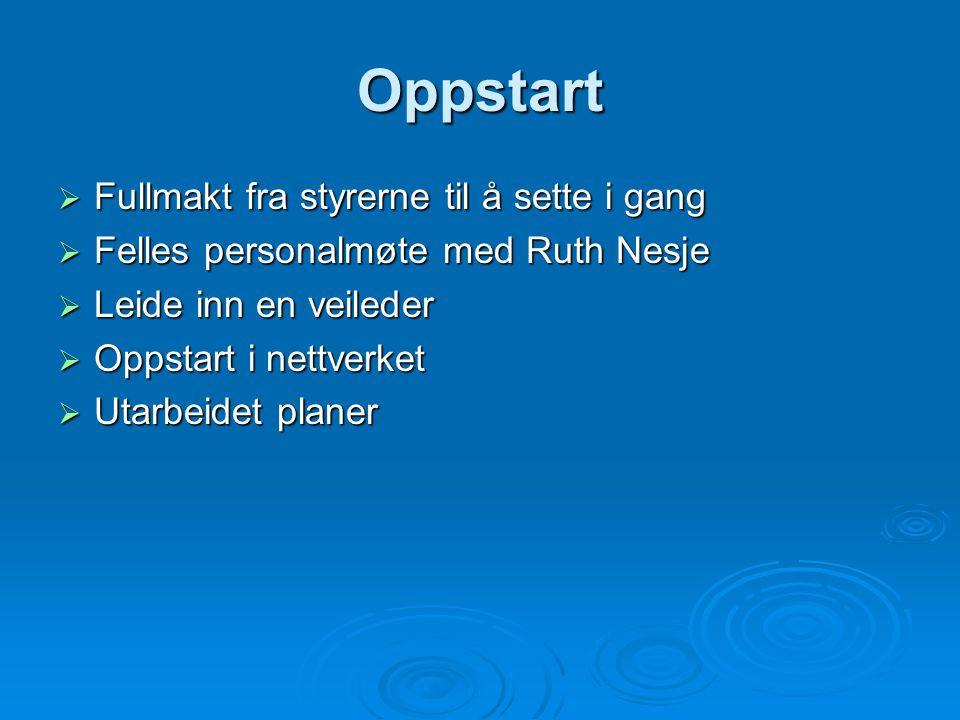 Oppstart  Fullmakt fra styrerne til å sette i gang  Felles personalmøte med Ruth Nesje  Leide inn en veileder  Oppstart i nettverket  Utarbeidet