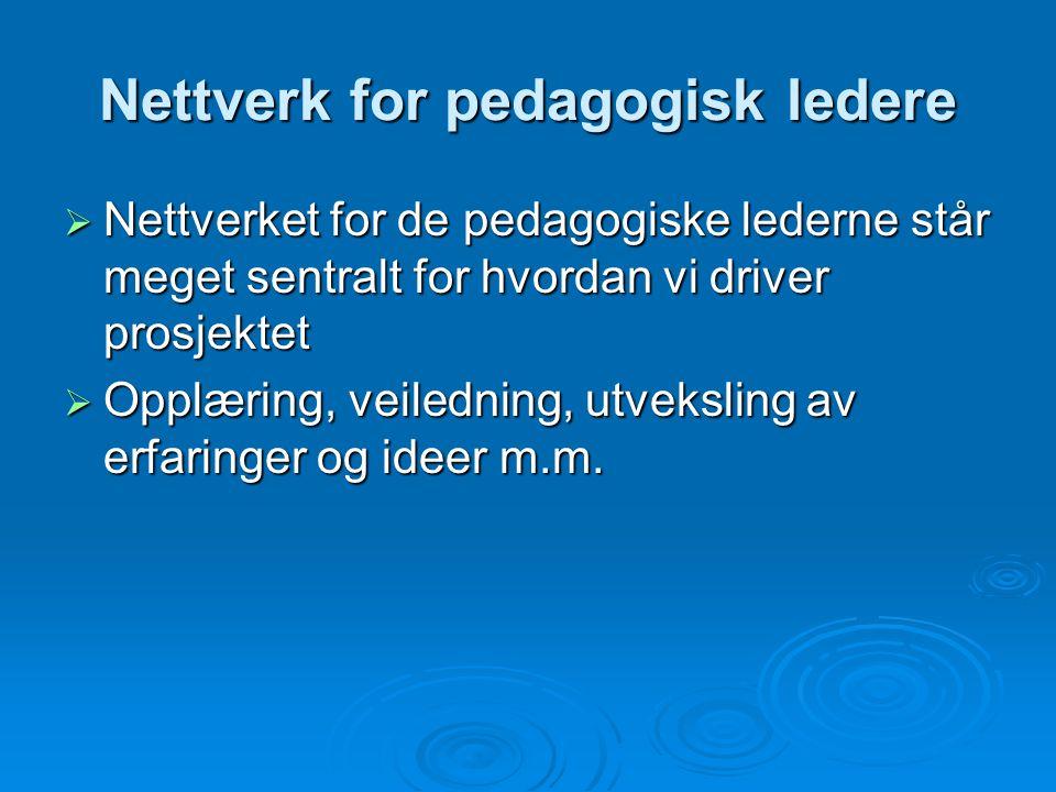 Nettverk for pedagogisk ledere  Nettverket for de pedagogiske lederne står meget sentralt for hvordan vi driver prosjektet  Opplæring, veiledning, u