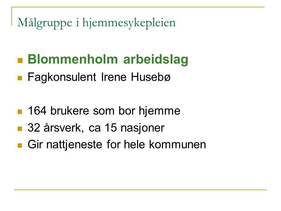 Målgruppe i hjemmesykepleien Blommenholm arbeidslag Fagkonsulent Irene Husebø 164 brukere som bor hjemme 32 årsverk, ca 15 nasjoner Gir nattjeneste fo
