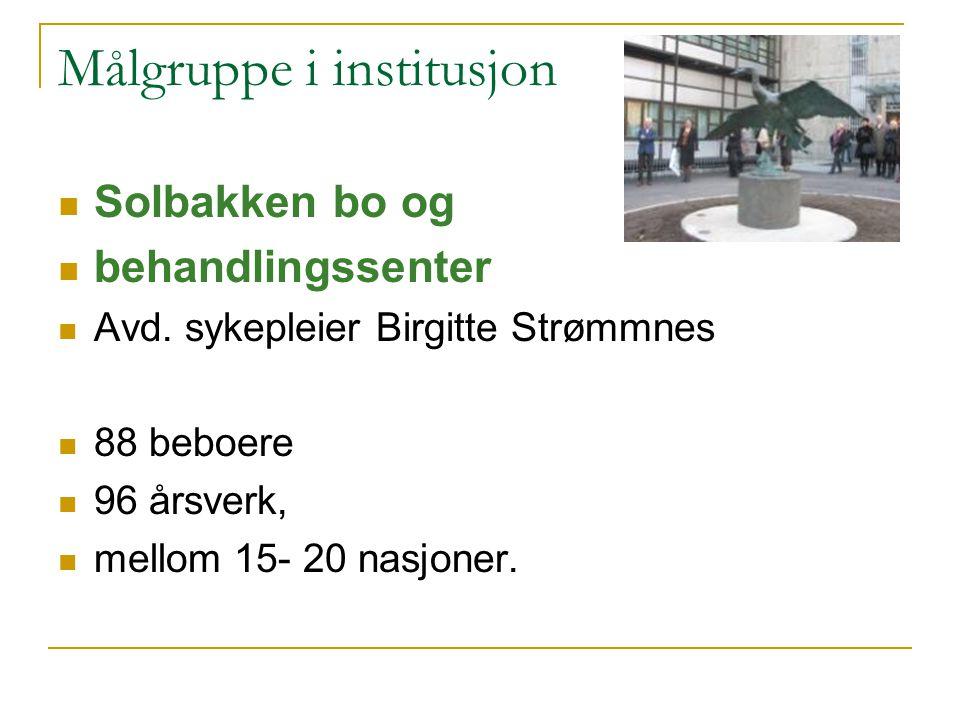 Målgruppe i institusjon Solbakken bo og behandlingssenter Avd. sykepleier Birgitte Strømmnes 88 beboere 96 årsverk, mellom 15- 20 nasjoner.