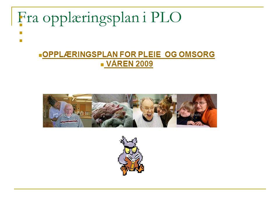 Fra opplæringsplan i PLO OPPLÆRINGSPLAN FOR PLEIE OG OMSORG VÅREN 2009