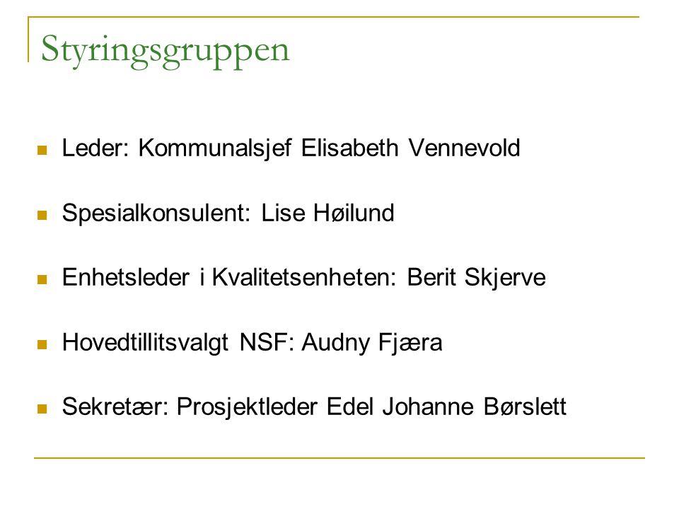Leder: Kommunalsjef Elisabeth Vennevold Spesialkonsulent: Lise Høilund Enhetsleder i Kvalitetsenheten: Berit Skjerve Hovedtillitsvalgt NSF: Audny Fjær