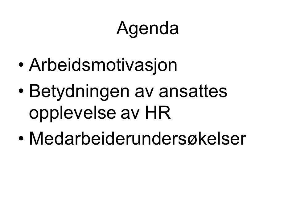 Medarbeiderskap To retninger innen medarbeiderskapstenkning (Veltén et al., 2008) Den ene retningen beskriver ansatte som er i stand til å lede seg selv i større og større grad Den andre retningen legger vekt på god samhandling mellom ledere og medarbeidere Anders Dysvik